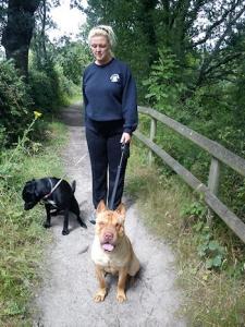 Walkies Dog Walking Services 07515 340 971 Gallery image 52