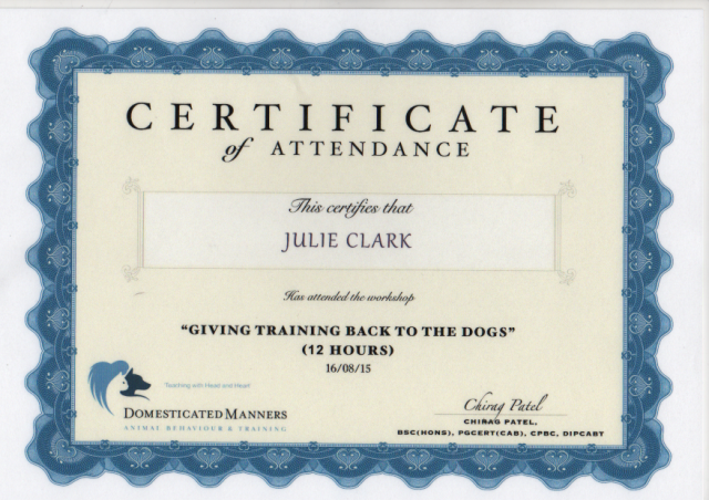 """Walkies"" Dog Walking Services 07515 340 971 - Certificate 11"